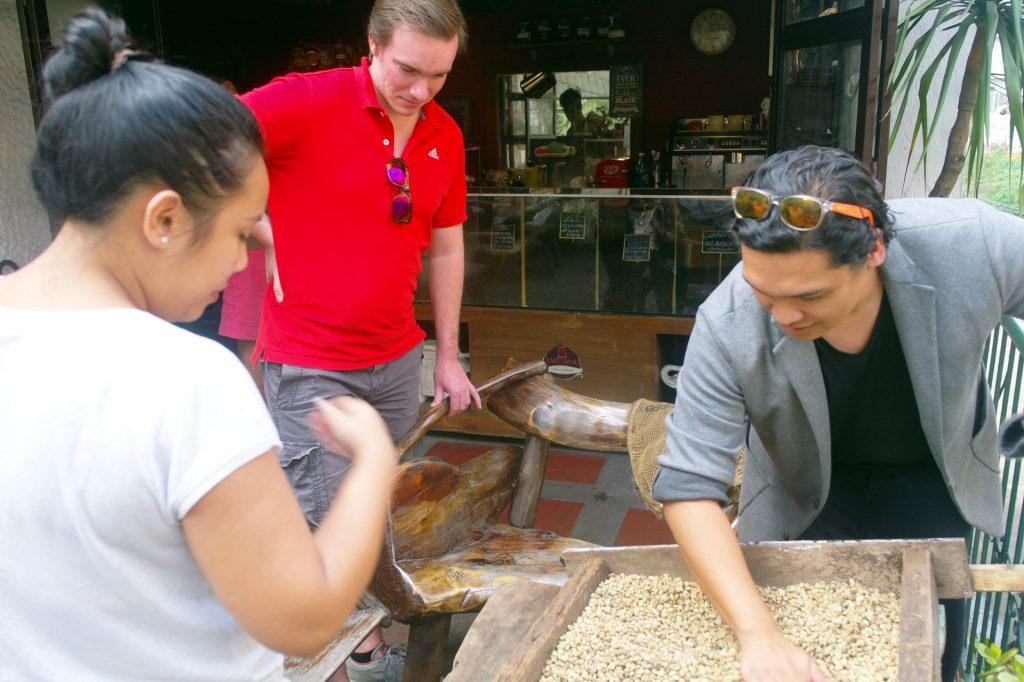 Die frischen Kaffeebohnen werden getrocknet